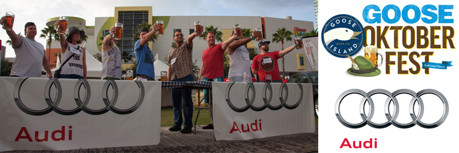 audi_goose_header_photo-collage-footer_2017_